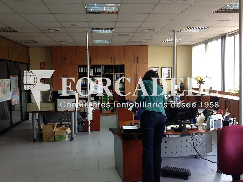 IMG_1787 - Nave industrial en alquiler en calle Provençals, El Raval en Barcelona - 266473020
