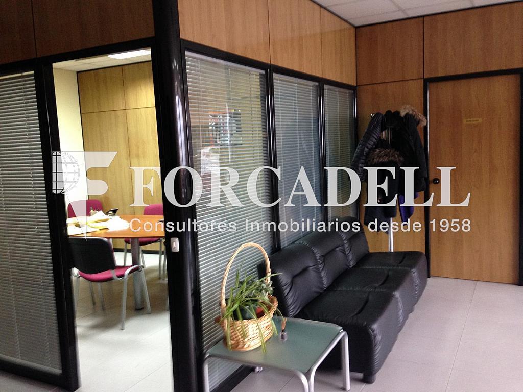 IMG_1786 - Nave industrial en alquiler en calle Provençals, El Raval en Barcelona - 266473023