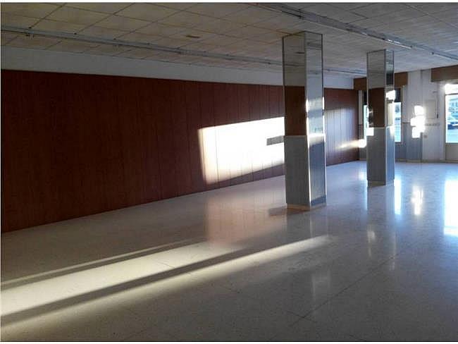 Local comercial en alquiler en Ejido (El) - 311001655