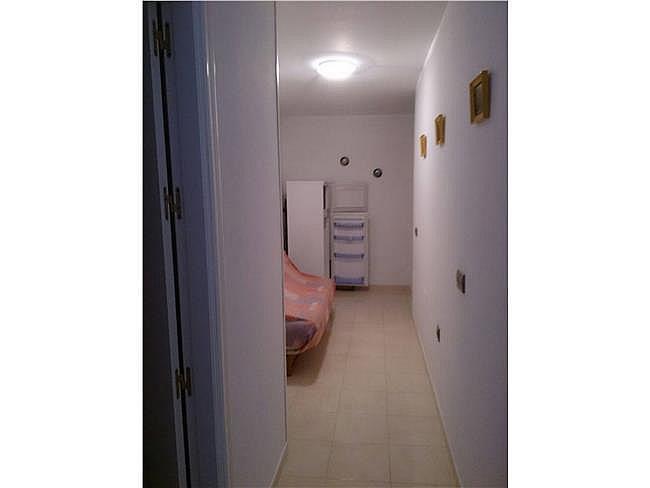 Piso en alquiler en Vícar - 311011147