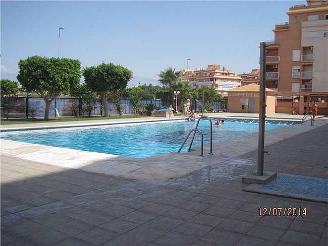 Estudio en alquiler de temporada en Roquetas de Mar - 311017963