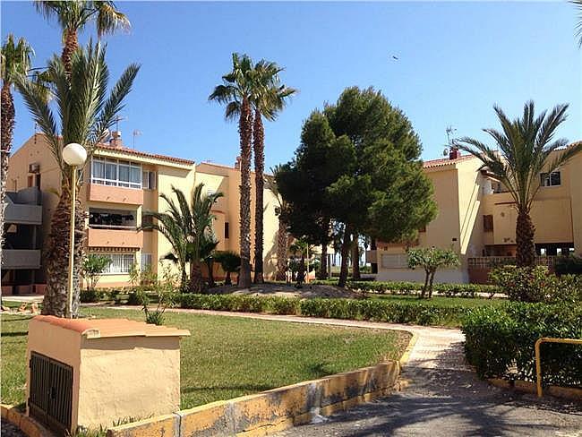 Piso en alquiler de temporada en Roquetas de Mar - 311021566