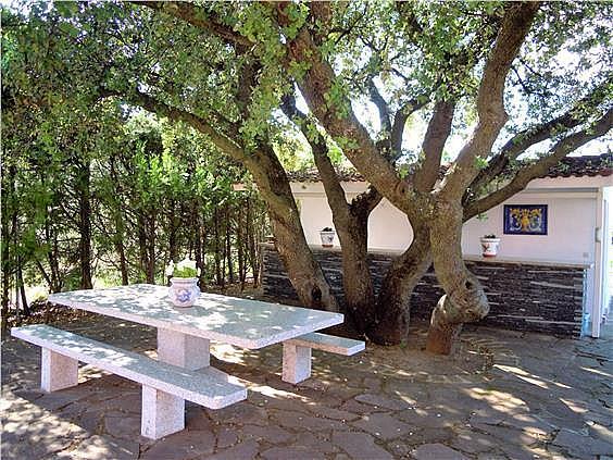 Casa en alquiler en El Pinar en Rozas de Madrid (Las) - 279744759