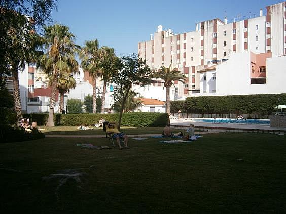 Estudio en alquiler de temporada en calle Gaviotas, Torre del mar - 290681809