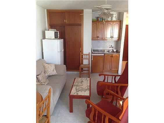 Estudio en alquiler de temporada en calle Gaviotas, Torre del mar - 290681824
