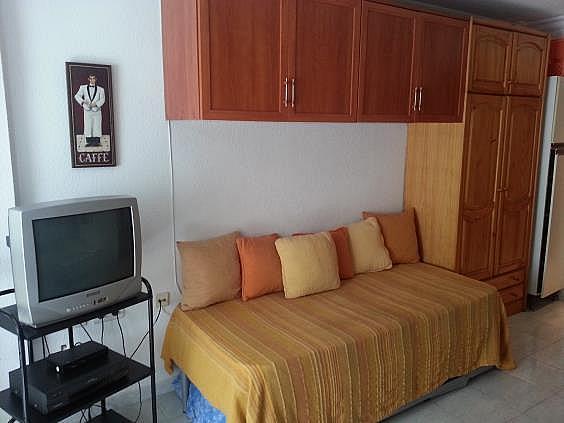 Estudio en alquiler de temporada en calle Gabarra, Torre del mar - 290683516
