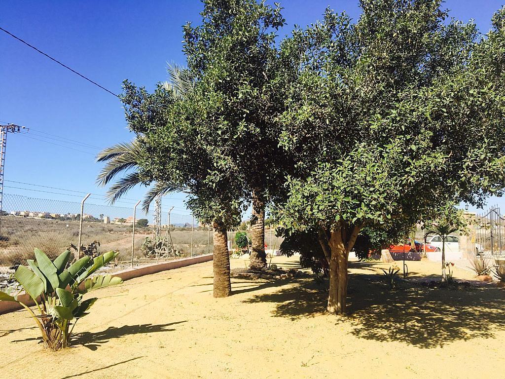 Jardín - Casa rural en alquiler en carretera Cope, Águilas - 272211492