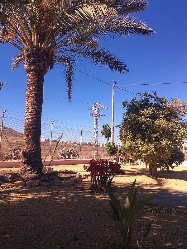 Jardín - Casa rural en alquiler en carretera Cope, Águilas - 272211558