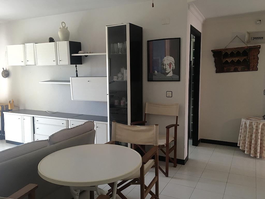 Comedor - Piso en alquiler en calle Severo Ochoa, Águilas - 277229693