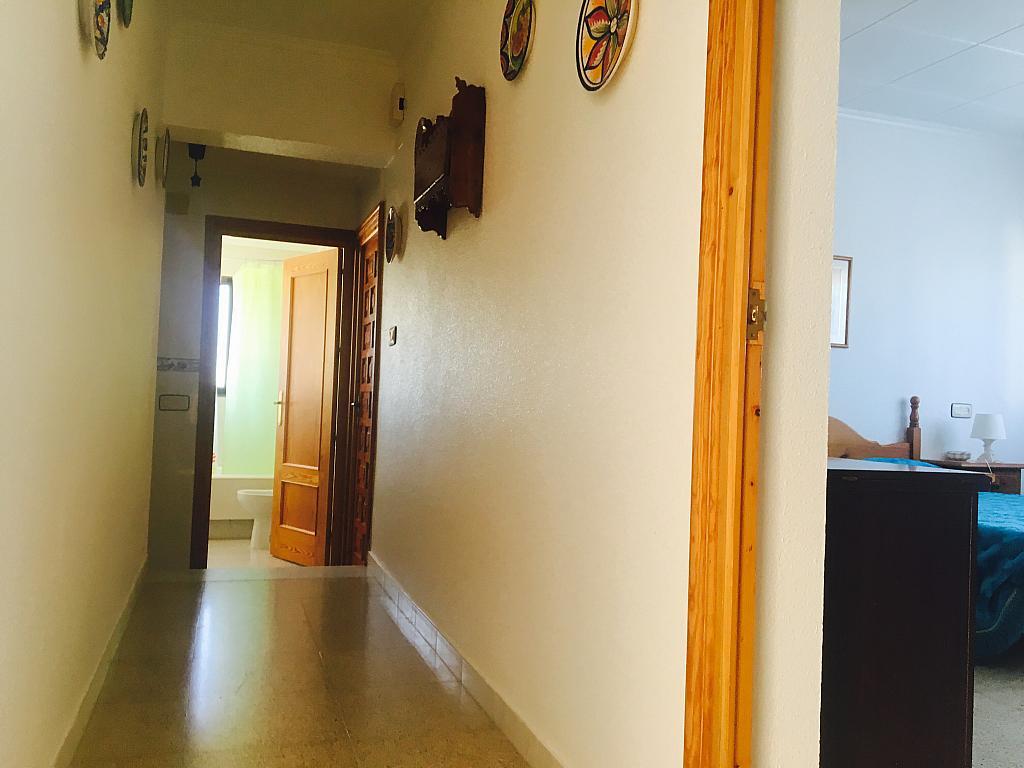 Pasillo - Casa rural en alquiler en calle Cabo Cope, Águilas - 271122611