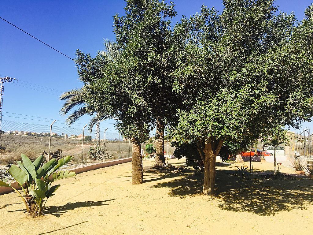Fachada - Casa rural en alquiler en calle Cabo Cope, Águilas - 271122752