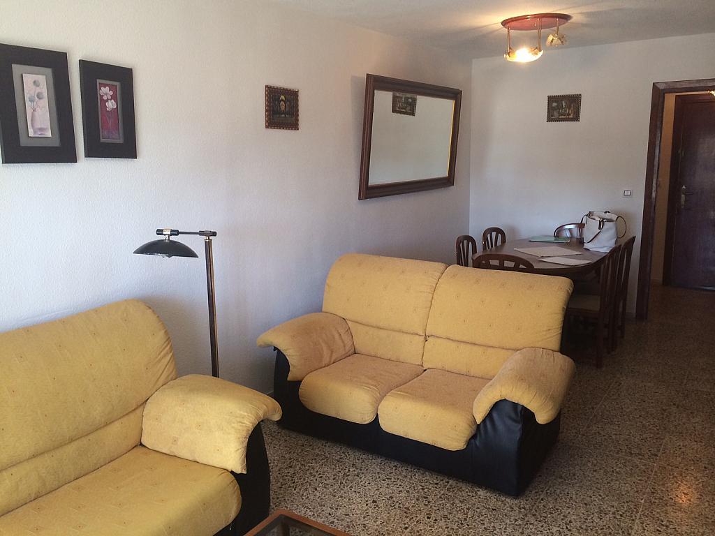 Comedor - Piso en alquiler en calle Iberia, Águilas - 163258473