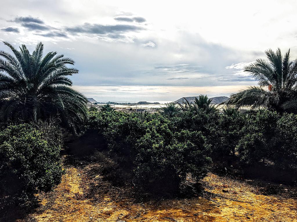 Vistas - Villa en alquiler de temporada en carretera Cocon, Águilas - 236572398
