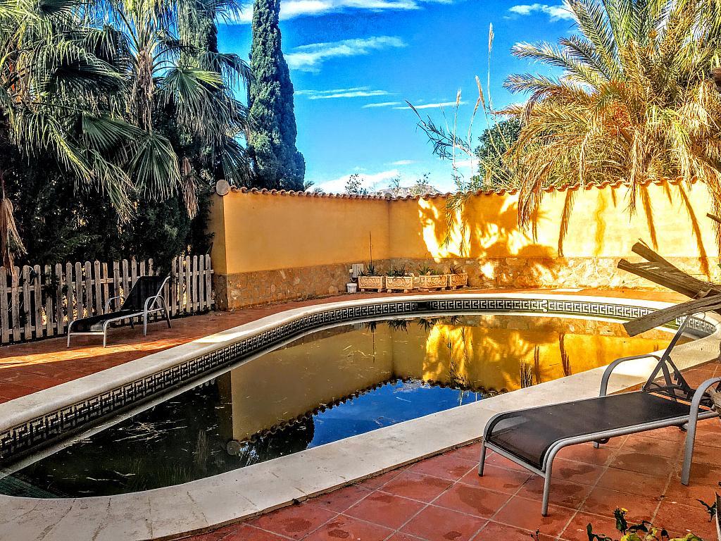 Piscina - Villa en alquiler de temporada en carretera Cocon, Águilas - 236572542