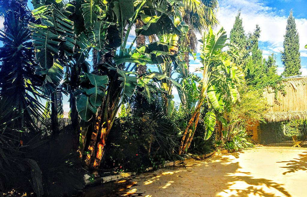 Casa rural en alquiler de temporada en carretera Cocon, Águilas - 236572457