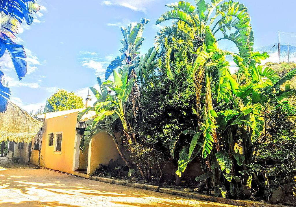 Casa rural en alquiler de temporada en carretera Cocon, Águilas - 236572461
