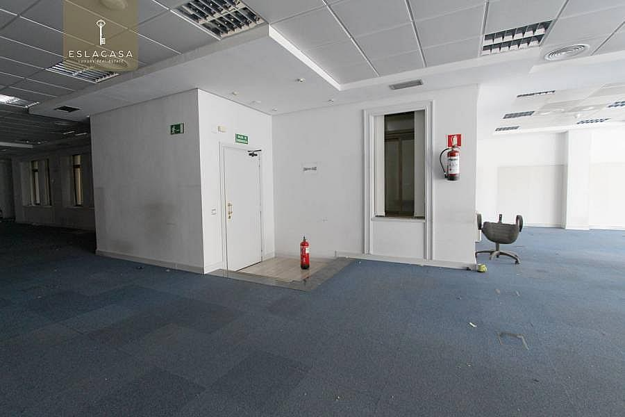 Foto - Oficina en alquiler en calle Centro, Centro en Madrid - 220914684