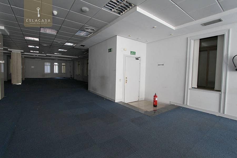 Foto - Oficina en alquiler en calle Centro, Centro en Madrid - 220914687