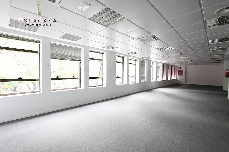 Foto - Oficina en alquiler en calle Chamartín, Chamartín en Madrid - 239985897