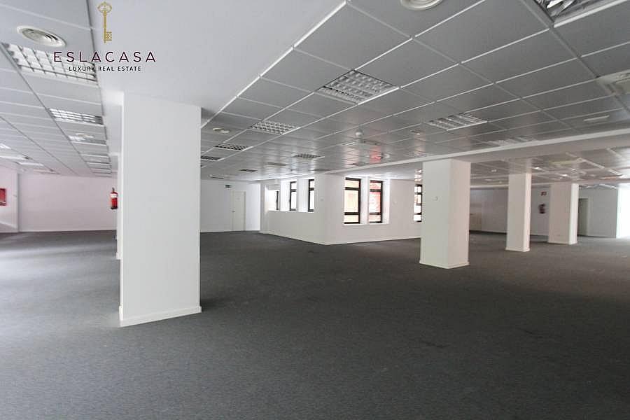 Foto - Oficina en alquiler en calle Chamartín, Chamartín en Madrid - 239985903