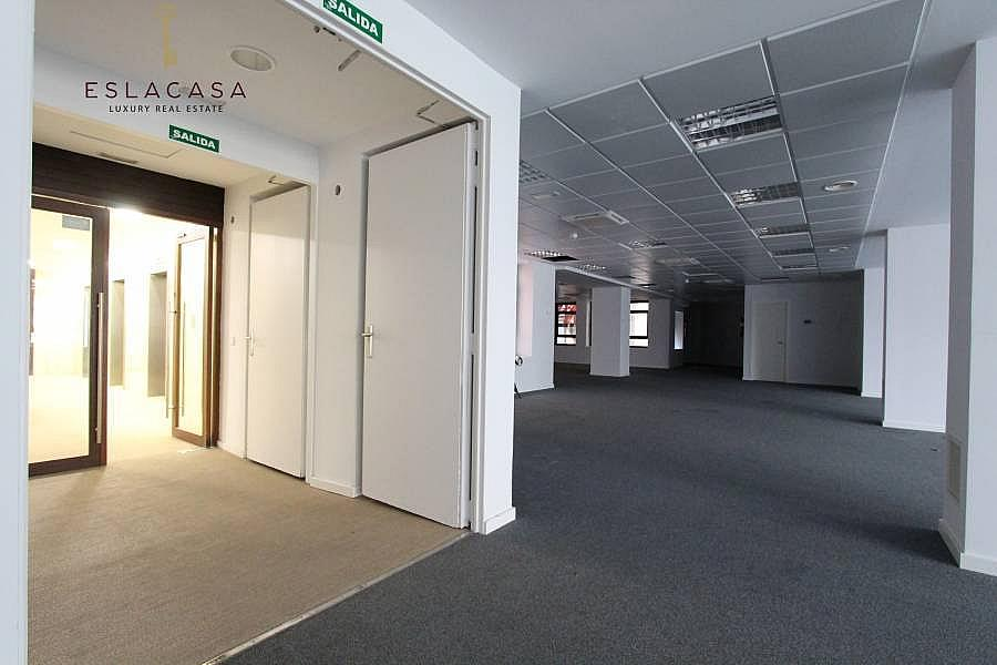 Foto - Oficina en alquiler en calle Chamartín, Chamartín en Madrid - 239985906