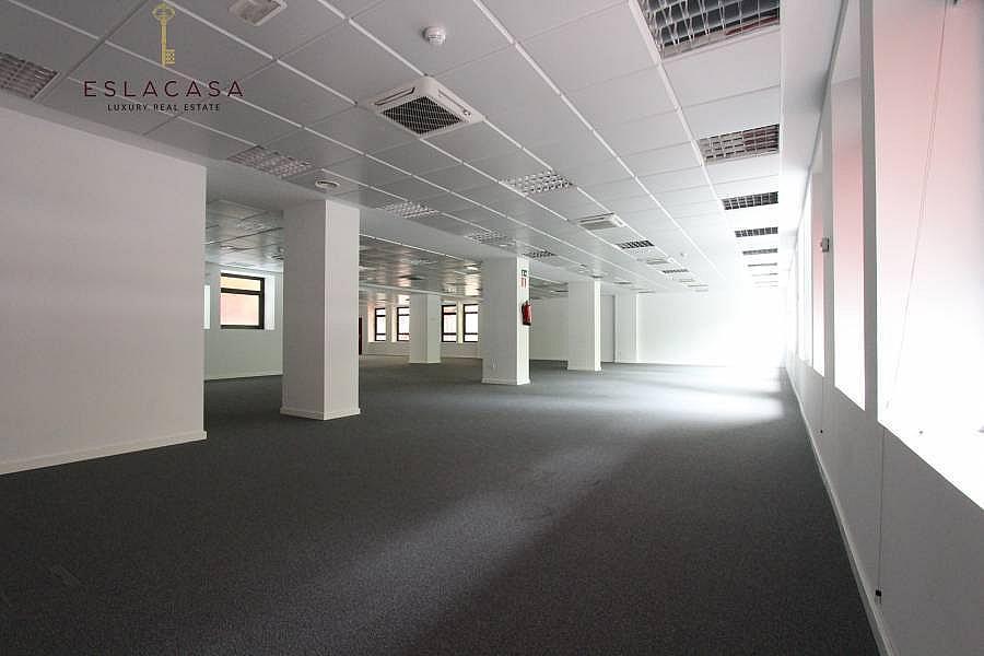 Foto - Oficina en alquiler en calle Chamartín, Chamartín en Madrid - 239985915