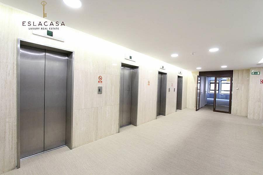 Foto - Oficina en alquiler en calle Chamartín, Chamartín en Madrid - 239985924