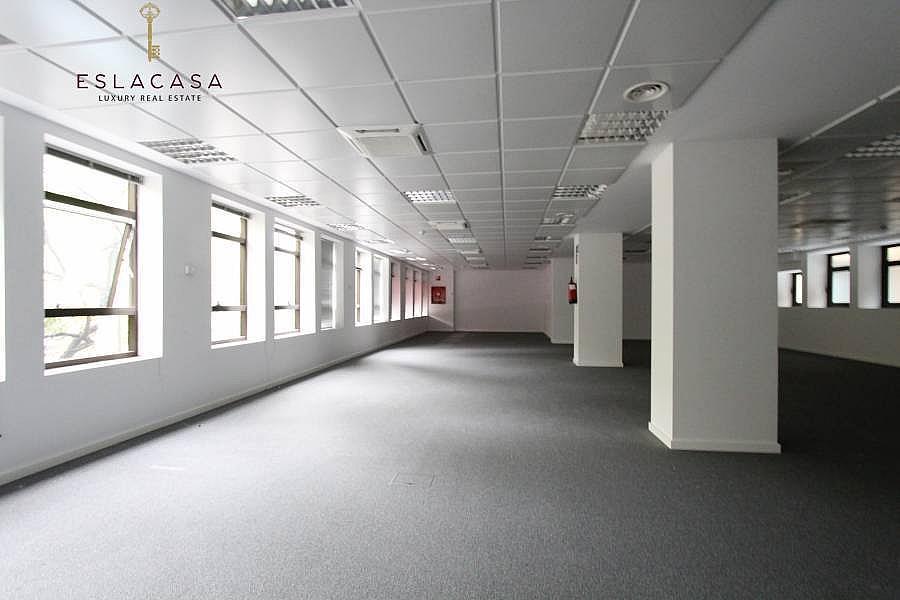 Foto - Oficina en alquiler en calle Chamartín, Chamartín en Madrid - 239985954