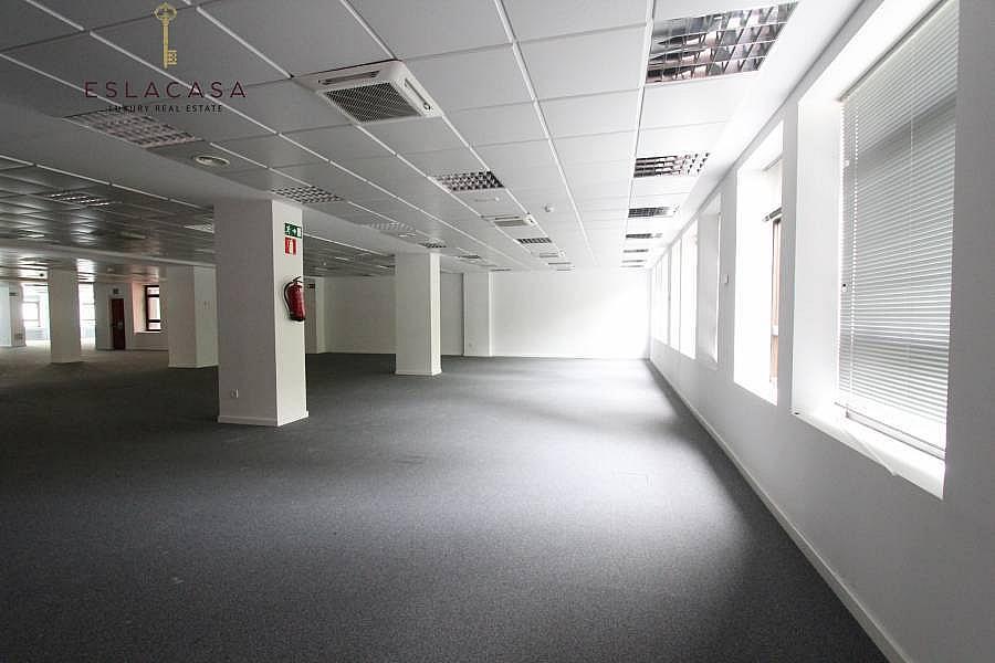 Foto - Oficina en alquiler en calle Chamartín, Chamartín en Madrid - 239985957