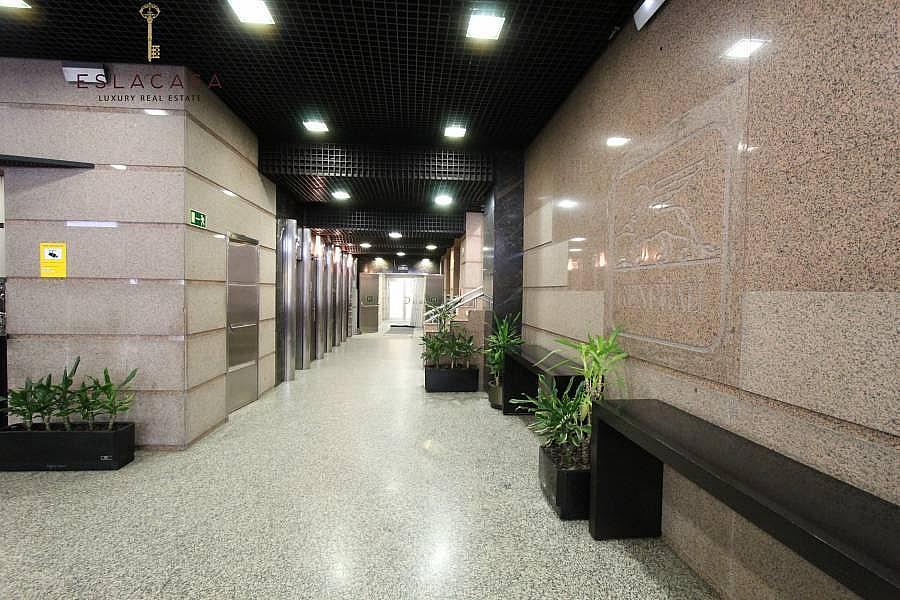 Foto - Oficina en alquiler en calle Chamartín, Chamartín en Madrid - 239985963