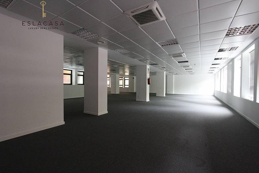 Foto - Oficina en alquiler en calle Chamartín, Chamartín en Madrid - 239985975