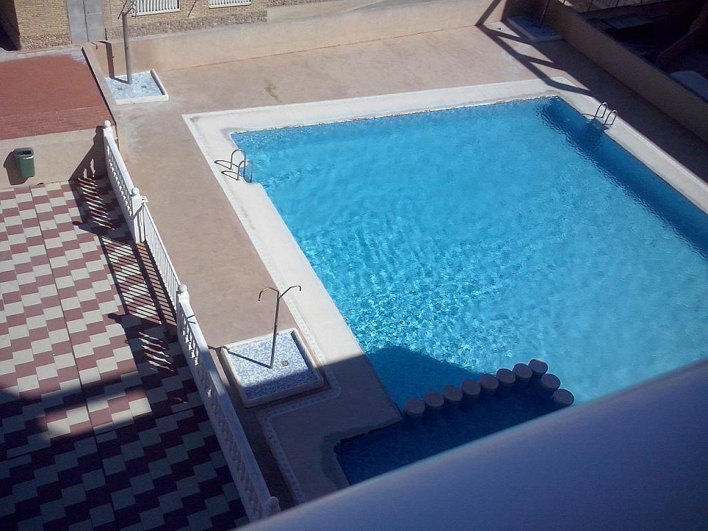Piscina - Apartamento en alquiler en calle Llobarro, Perellonet - 202878001