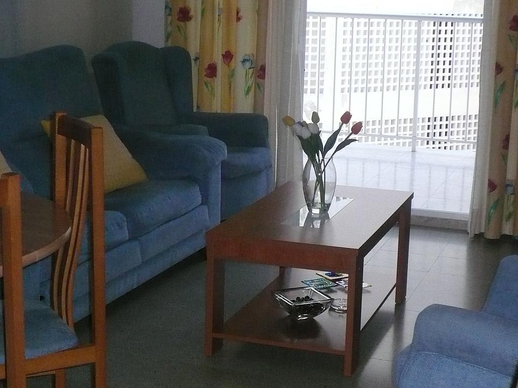 Comedor - Piso en alquiler en calle Gaviotas, Perellonet - 123831304