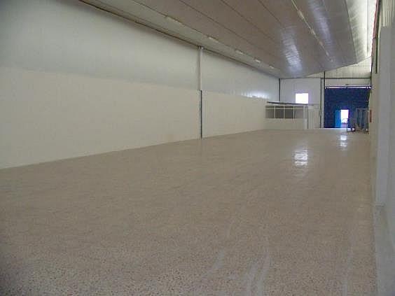 Nave industrial en alquiler en Murcia - 324580270