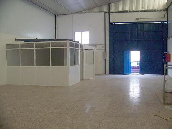 Nave industrial en alquiler en Murcia - 324580273