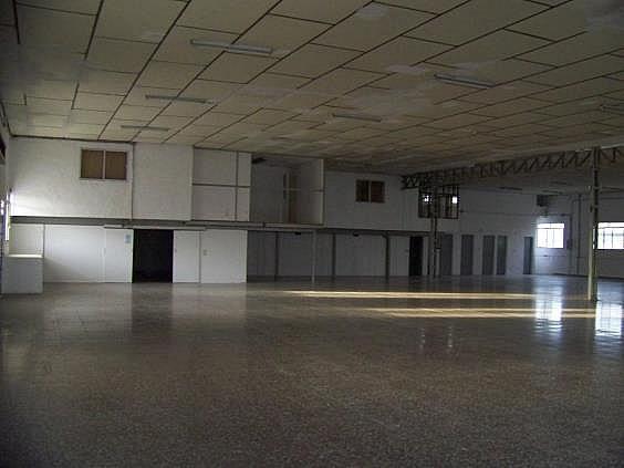 Nave industrial en alquiler en Murcia - 324580321