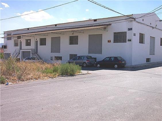 Nave industrial en alquiler en Murcia - 324580348