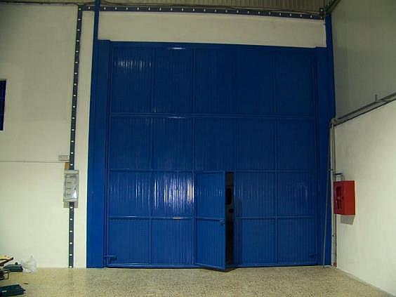 Nave industrial en alquiler en calle De Las Americas, Murcia - 324580615
