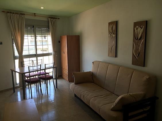 Apartamento en alquiler en La Purisima - Barriomar en Murcia - 328397431