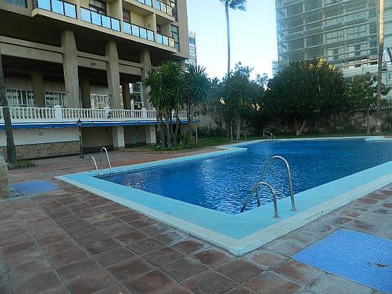 Piso en alquiler de temporada en Puerto Marina en Benalmádena - 249980467