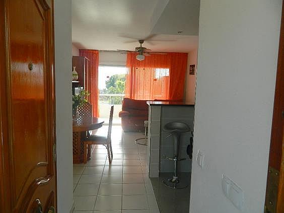 Piso en alquiler de temporada en Puerto Marina en Benalmádena - 251972306