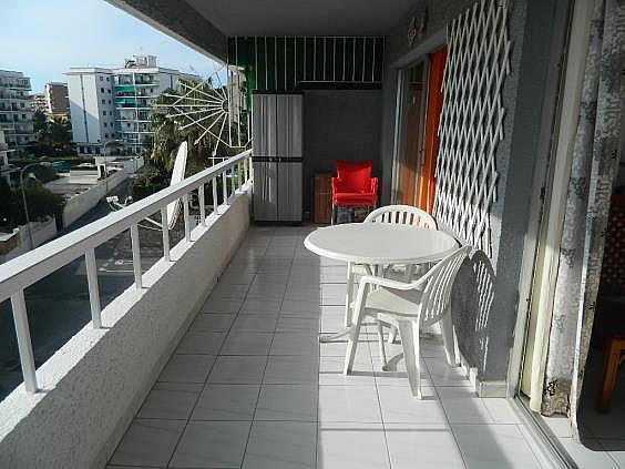 Piso en alquiler de temporada en Puerto Marina en Benalmádena - 251972333