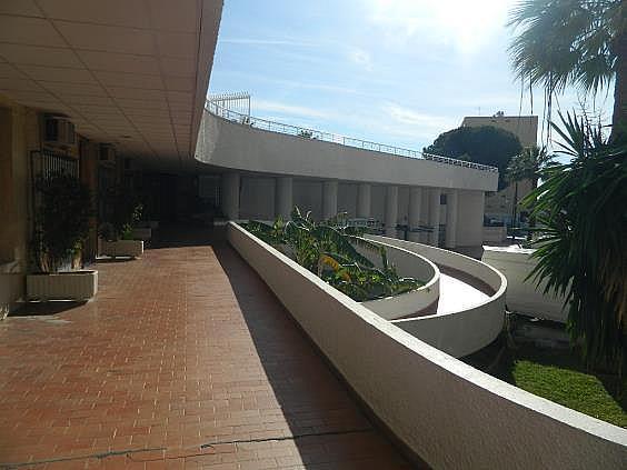 Piso en alquiler de temporada en Puerto Marina en Benalmádena - 251972390