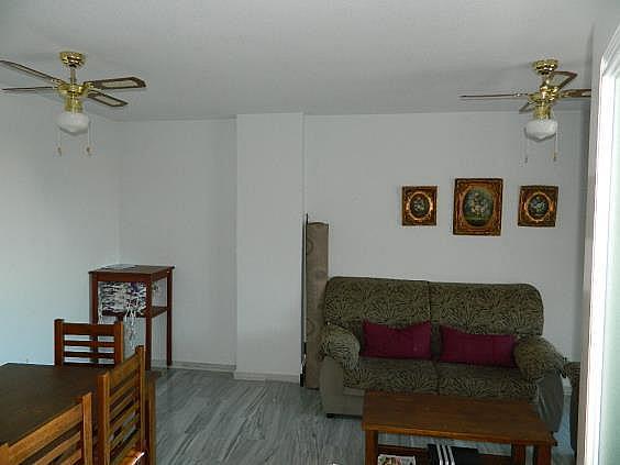 Piso en alquiler de temporada en Puerto Marina en Benalmádena - 252468746