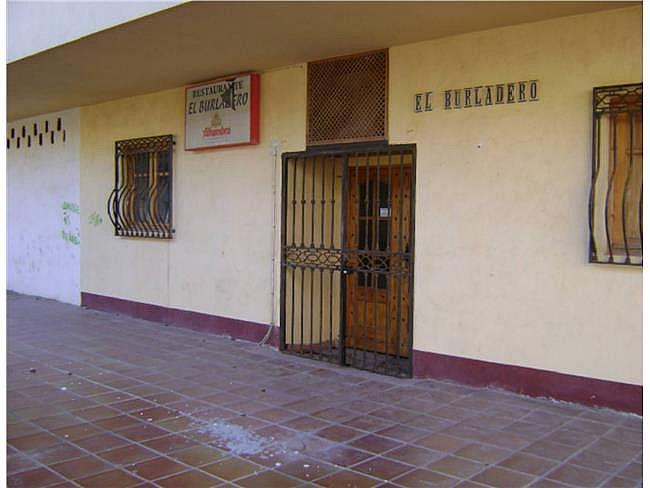 Local comercial en alquiler en Almerimar - 306304043