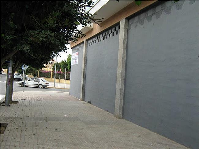 Local comercial en alquiler opción compra en Ejido (El) - 306279089
