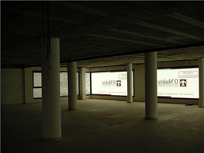 Local comercial en alquiler en Ejido (El) - 306275123