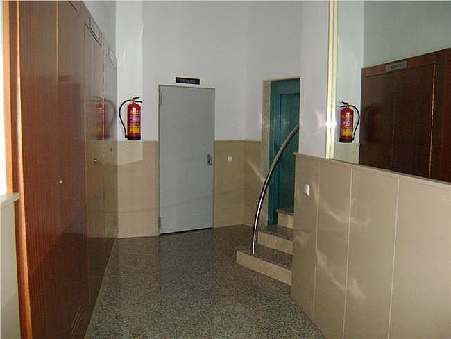 Oficina en alquiler en Ejido (El) - 306302711