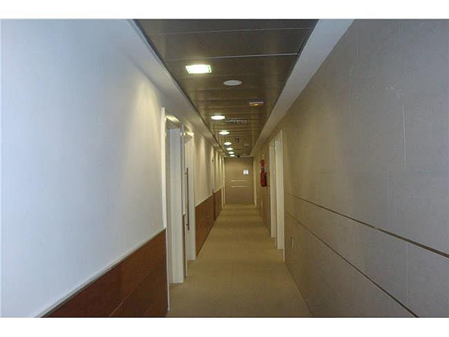 Oficina en alquiler en Aguadulce - 306306134