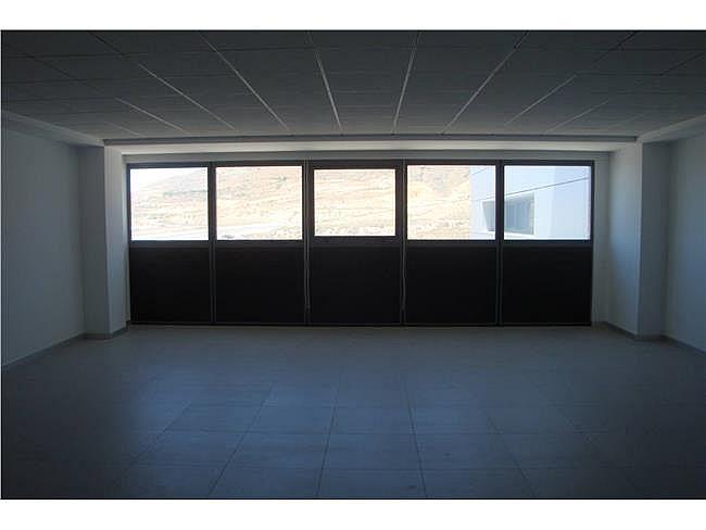 Oficina en alquiler en Aguadulce - 306306137